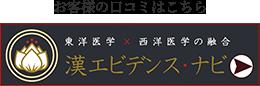 漢エビデンス・ナビ
